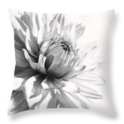 Dahlia Flower In Monochrome Throw Pillow
