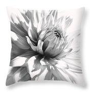 Dahlia Flower In Monochrome Throw Pillow