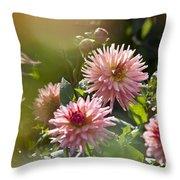 Dahlia Garden Throw Pillow