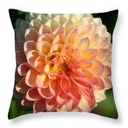 Dahlia Hue Throw Pillow