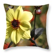 Dahlia Knockout Throw Pillow