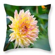 Dahlia Magic Throw Pillow