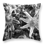 Dahlia Named Amy's Star Throw Pillow