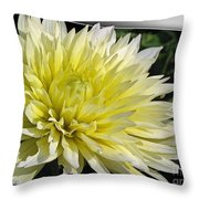 Dahlia Named Canary Fubuki Throw Pillow