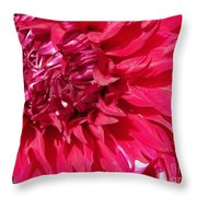 Dahlia Named Mingus Erik Throw Pillow