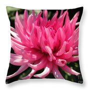 Dahlia Named Pretty In Pink Throw Pillow