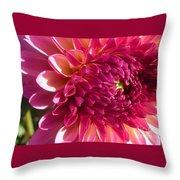 Dahlia Pink 1 Throw Pillow