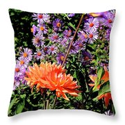 Dahlias And Asters Throw Pillow