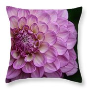 Dahlia's Outta Da Blu Throw Pillow