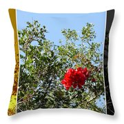 Daily Cycle - Triptych Throw Pillow