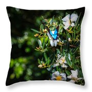 Daintree Monarch Butterfly Throw Pillow
