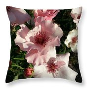 Dainty Roses 2 Throw Pillow
