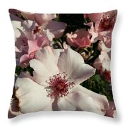 Dainty Roses Throw Pillow