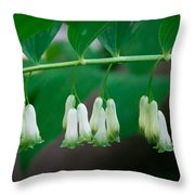 Dainty White Flowers Central Park Throw Pillow