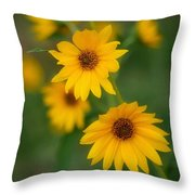 Daised Throw Pillow