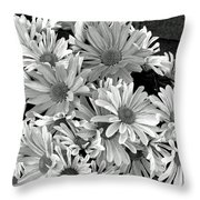 Daises In Black And White Throw Pillow