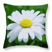 Daisey Flower - Looks Like A Painting Throw Pillow