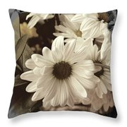 Daisies And Charcoal Throw Pillow