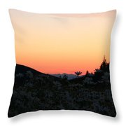 Daisies And Sunrise Throw Pillow