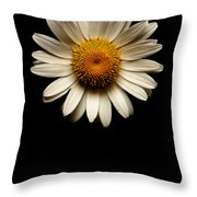Daisies Are Not Flowers No Text Throw Pillow