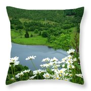 White Daisies At Queens View Throw Pillow