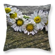 Daisies In Wreath Throw Pillow