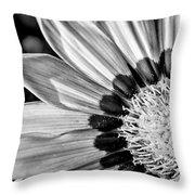 Daisy - Bw Throw Pillow