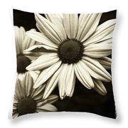 Daisy 1 Throw Pillow by Tanya Jacobson-Smith