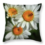 Daisy And Friend Throw Pillow