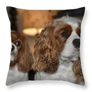 Daisy And Rivers Throw Pillow