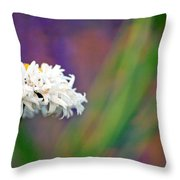 Daisy At Attention Throw Pillow