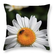 Daisy Bee Nice Throw Pillow