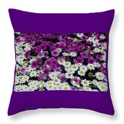 Daisy Bouquet From Dublin  Throw Pillow