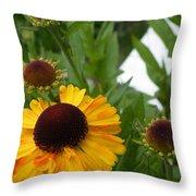 Daisy Chain Throw Pillow