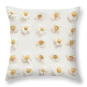 Daisy Collection Throw Pillow