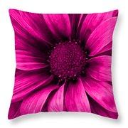 Daisy Daisy Neon Pink Throw Pillow