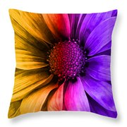 Daisy Daisy Yellow To Purple Throw Pillow