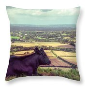 Daisy Enjoys The View From Truleigh Hill Throw Pillow