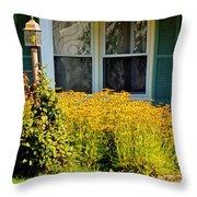Daisy Entrance Throw Pillow