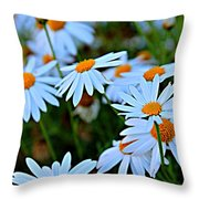 Daisy Fireworks Throw Pillow