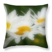 Daisy Flower Trio Throw Pillow