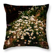 Daisy - Give Me Your Answer Do Throw Pillow