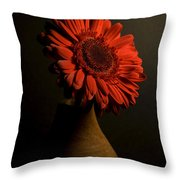Daisy In Vase Throw Pillow