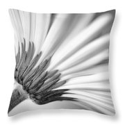 Daisy Noir Throw Pillow
