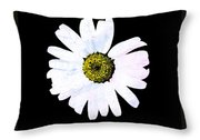 Daisy On Black Throw Pillow