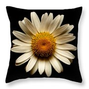 Daisy On Black Square Throw Pillow