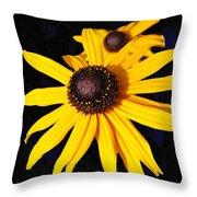 Daisy On Dark Blue Throw Pillow
