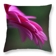 Daisy Petals Throw Pillow