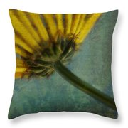Daisy Reach Throw Pillow