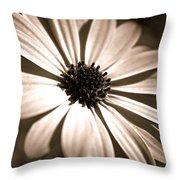 Daisy Shimmer Throw Pillow